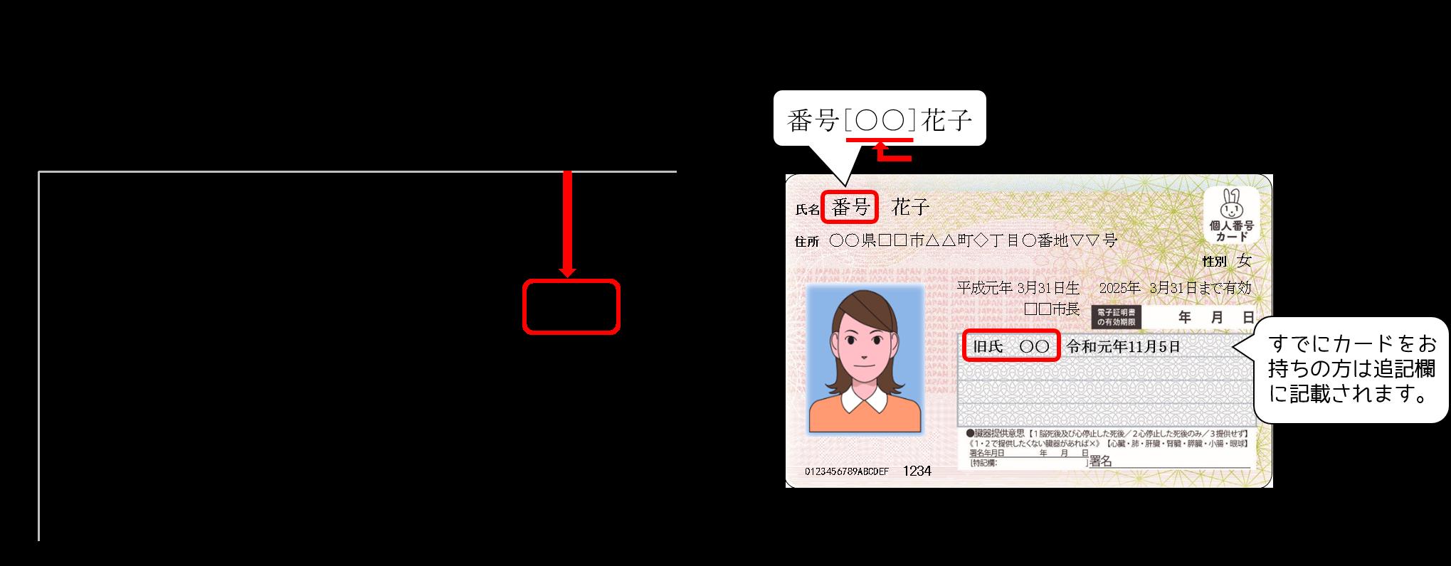 運転 免許 証 旧姓